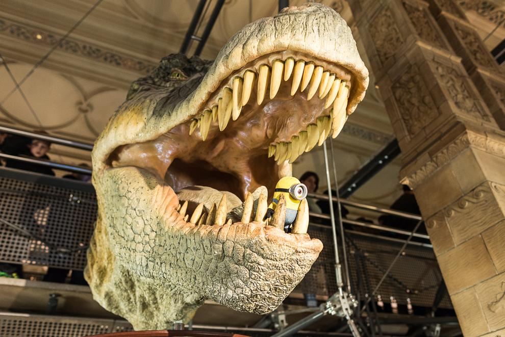 natural-history-museum-012