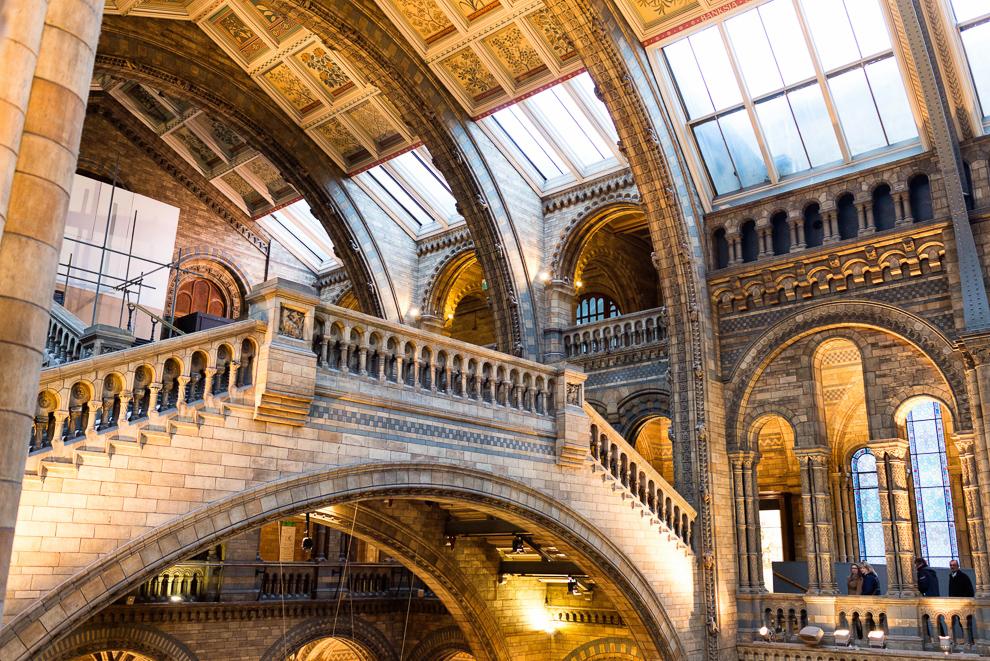natural-history-museum-020