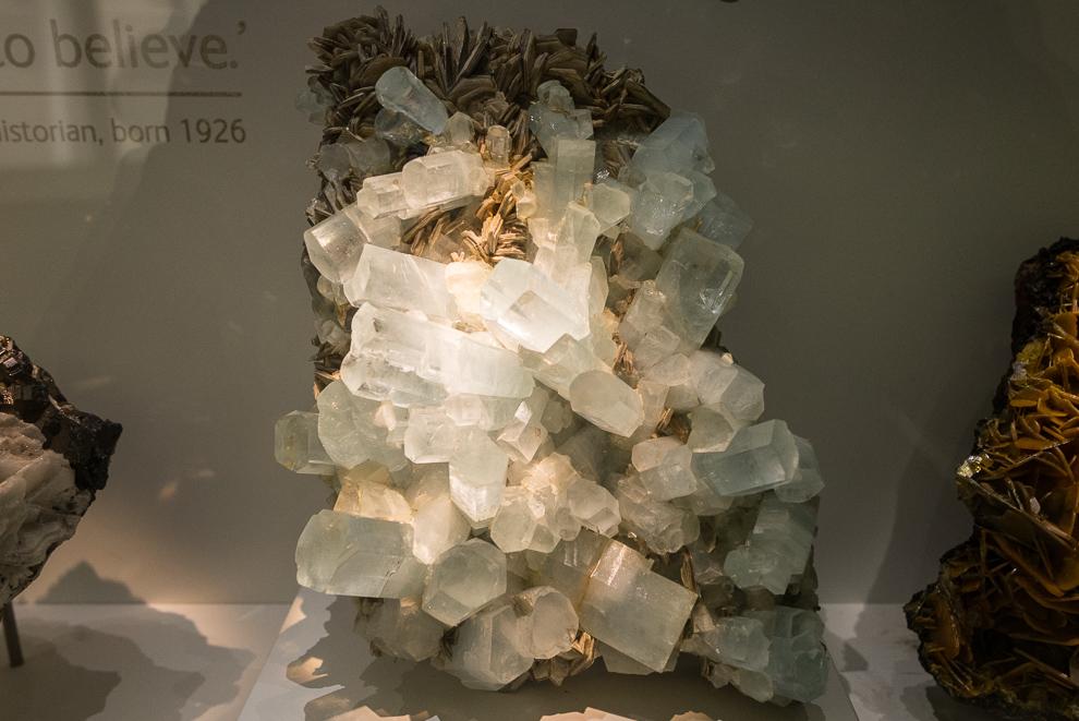 natural-history-museum-022