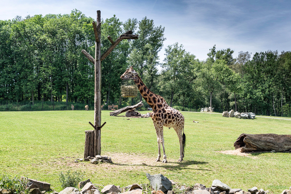 ostrava-zoo-002
