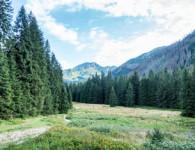 dolina-koscieliska-small